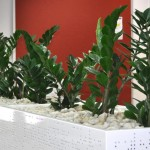 Gallery of Tambour Cabinet Planters