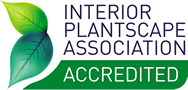 Accredited indoor plant hire Brisbane
