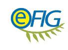 eFIG Logo