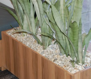 Custom Planters Brisbane - we can help you design your custome or insitu planters.