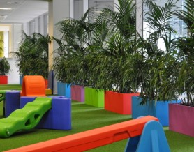 Urban12s with Ficus and Kentia Palm surround the play area.
