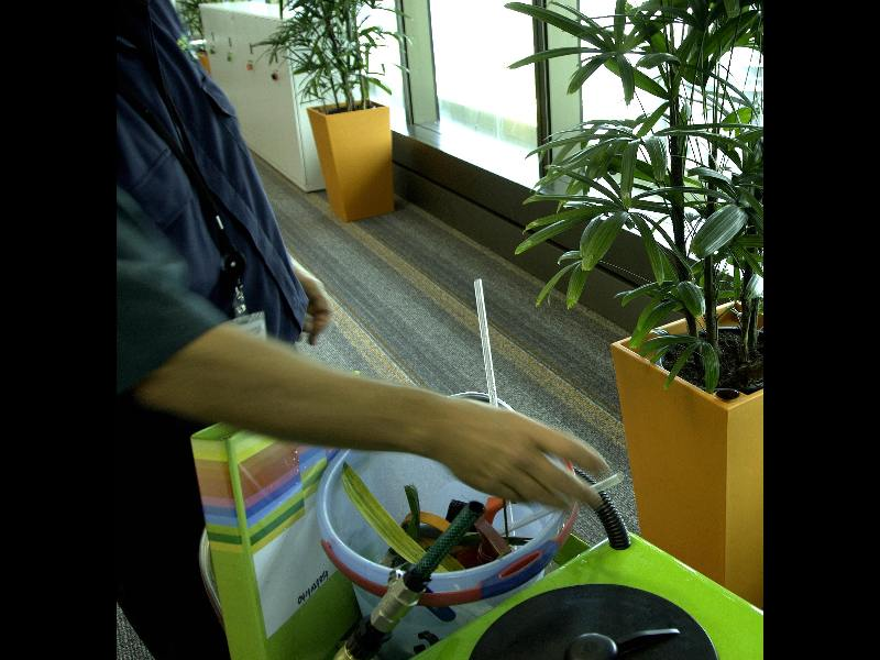 Types of indoor plant services