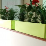 These planters sit on top of partitions so use no valuable floor or desk space.