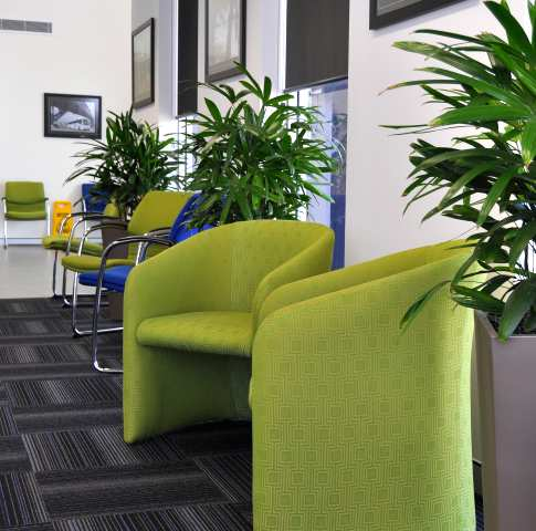 Wedge planters in a colour matching the carpet in a waiting room at Caboolture