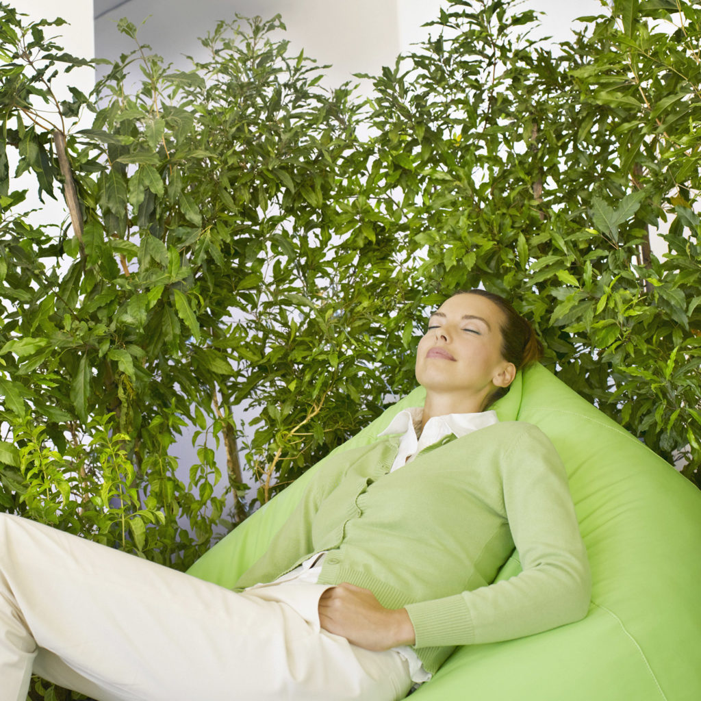 An image of a young woman relaxing in a bean bag in front of small leaf fig trees.