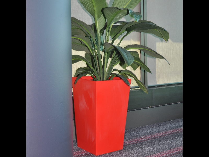 Showing a Urban Wedge in poppy red with Spathiphyllum Sensation