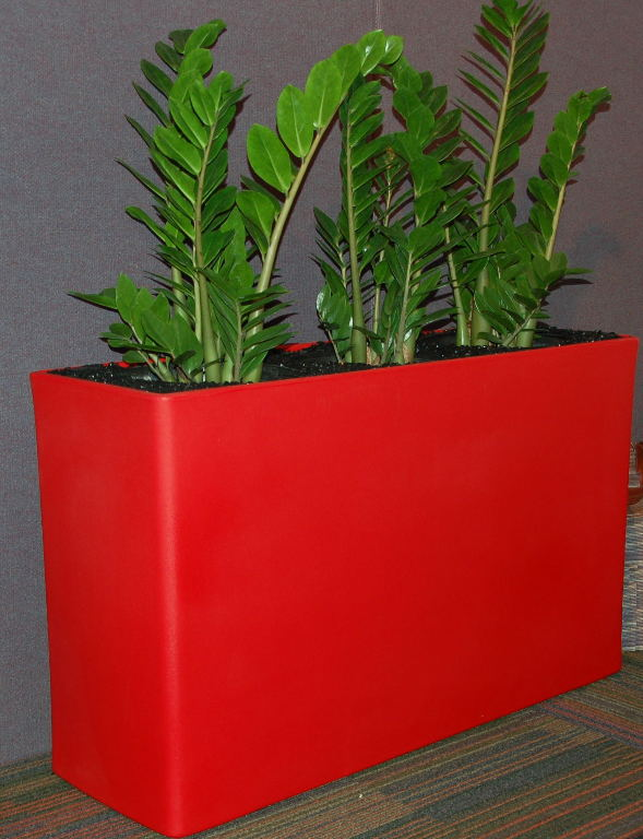 Showing a poppy coloured Urban 10 trough with Zanzibar Gems