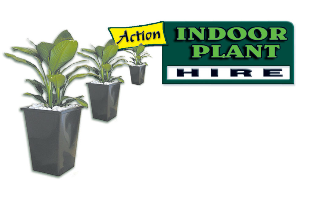 Showing Action Indoor Plan Hire old Logo