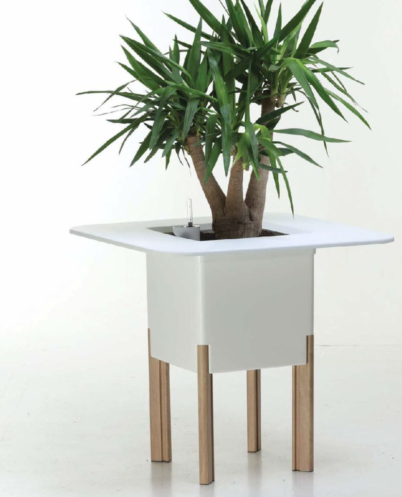 Showing a white Mediterranio Planter with four timber legs.