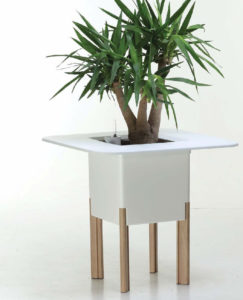 Showing a white Mediterranio Planter with four timber legs .