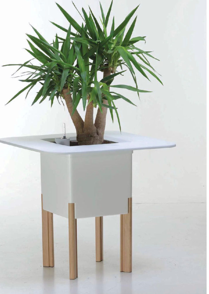 Showing a Mondum Planter in white with four legs and holding a Yucca plant.
